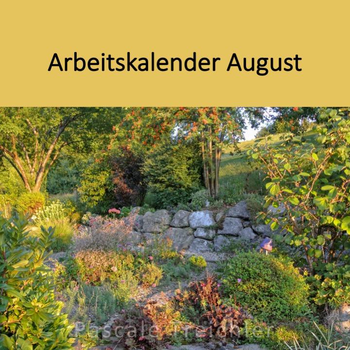 Garten Arbeitskalender August