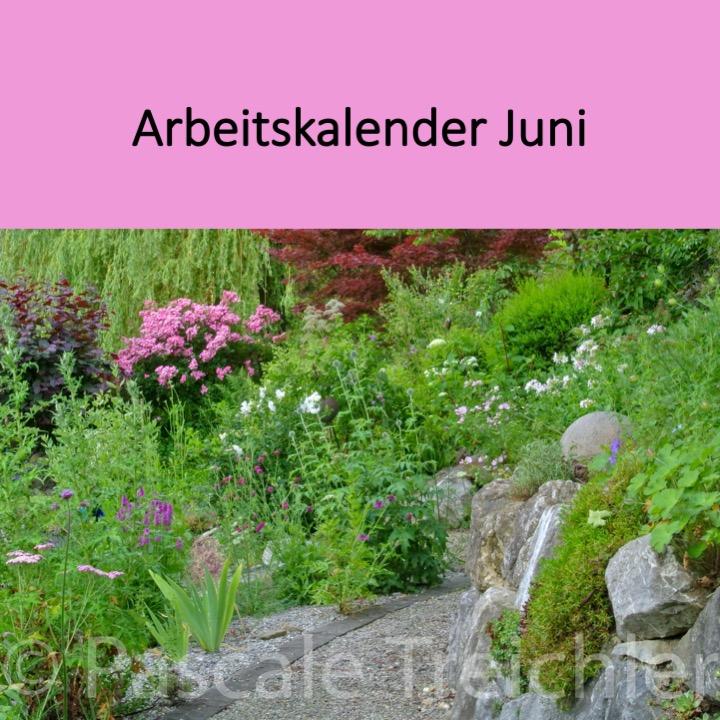 Garten Arbeitskalender Juni