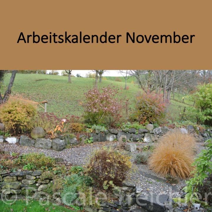 Garten Arbeitskalender November