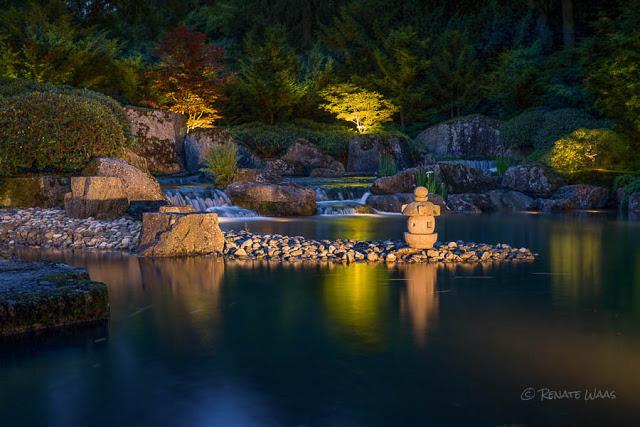 Gartenfotografie bei Nacht  - der Japanische Garten in Augsburg abends mit Gartenbeleuchtung