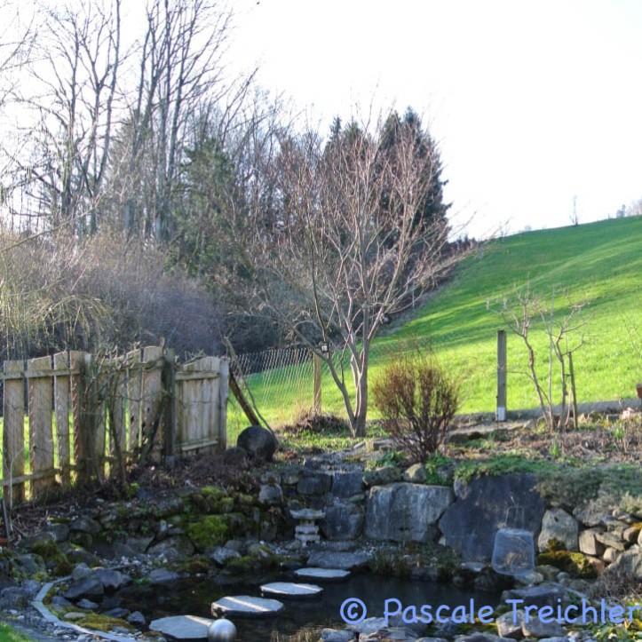 Gartenblog 2017.03-30