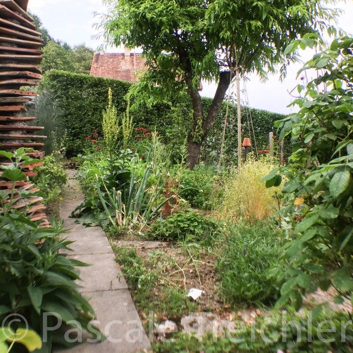 Kräutergarten - 4015