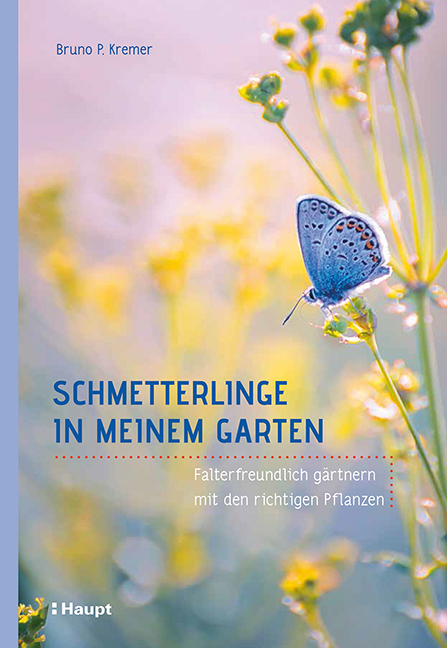2018.05. Schmetterlinge