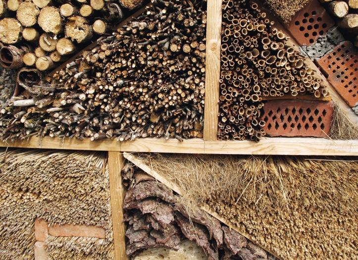 Bienenparadies_BPK_S.31