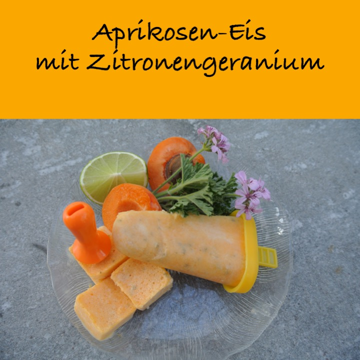 Aprikoseneis mit Zitronengeranium