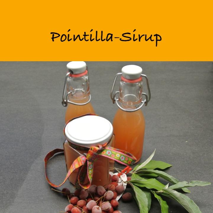 Pointilla Sirup