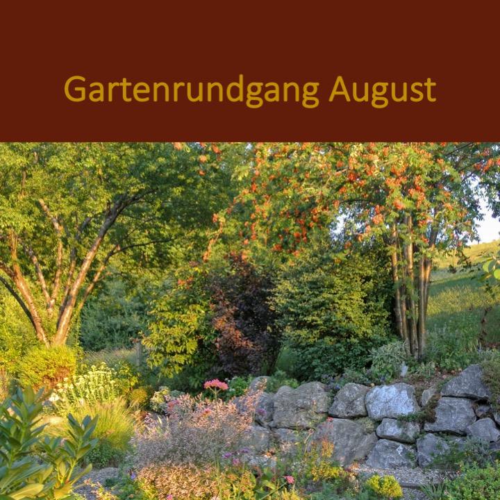 Garten Rundgang August.jpg