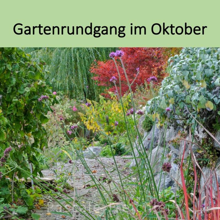 Gartenrundgang im Oktober
