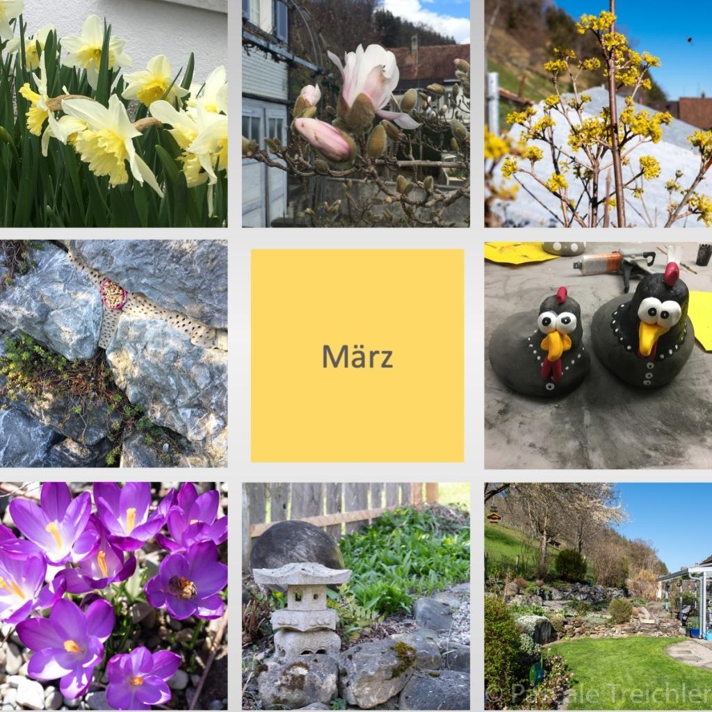 Gartenrundgang März 2020 – Garten von Pascale