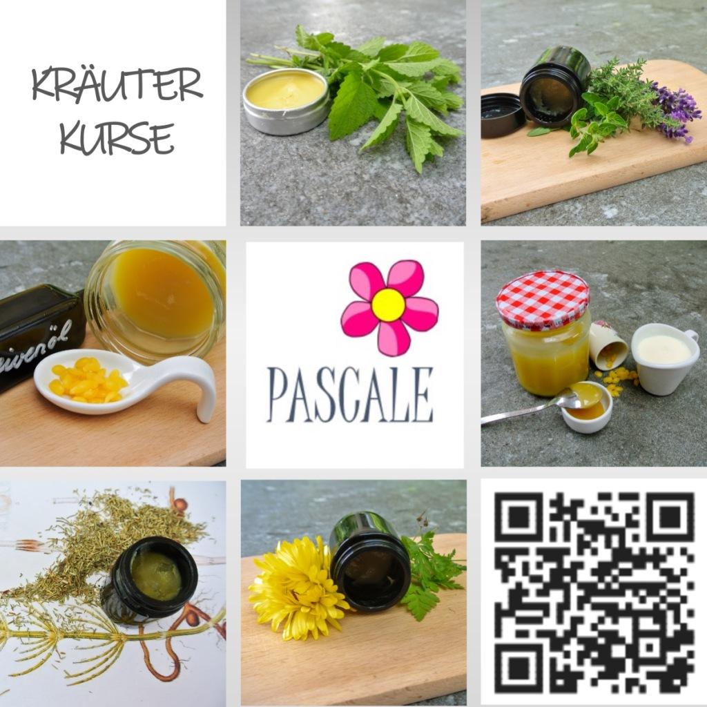 Kräuterkurse bei Pascale